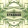Command Strange & Alibi - Skyline [V Recordings]
