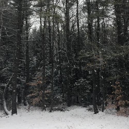 P C III- Snow Ticket (creative commons instrumental)