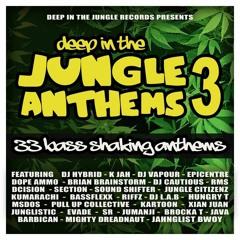 Java - Junglestep (DJ Hybrid Remix)