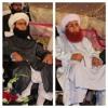 Sarwary Di Ki Gadai Saifi Naat By Sufi Hammad Muhammadi Saifi Mp3