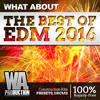 The Best Of EDM 2016 [90+ Construction Kits, 500+ Drums, 130+ Melodies, 180+ Presets] OUT NOW!