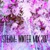 STEAM WINTER MIX JAN 2017