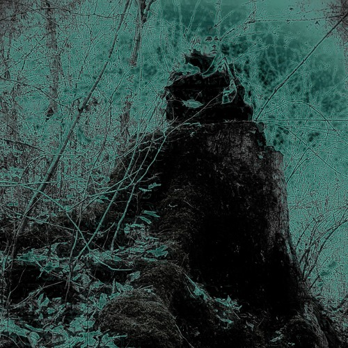 Aberrant Species - Plato's Cave