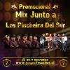 7 Machos FT Los Pincheira del Sur Mix El Proximo Tonto La Mejor de Todas Ay Amigo
