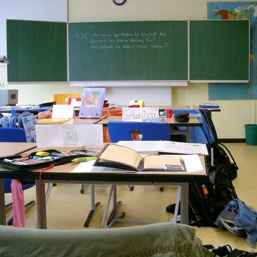 """SWR1: """"Flüchtlingskrise""""? Lehrer am Rande ihrer Kräfte"""
