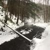 Gurgling Mountain Brook