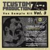 TCustomz Productionz Vox Sample Kit Vol. 3 DEMO