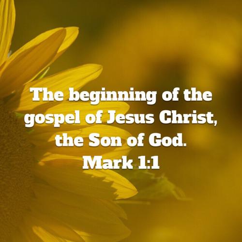 Sermons from Mark's Gospel