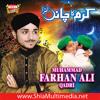 Sunle Arzan Meriyan Punabi Naat by Farhan Ali Qadri