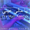 يا مالي عيني Ya Mali Aaeny (Tamer Hosny) Piano Cover | Finn M-K
