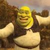 Morning Person - Shrek Jr. (Cover)