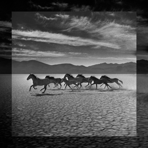 "Oikos' ""The Great Upheaval"" album preview"