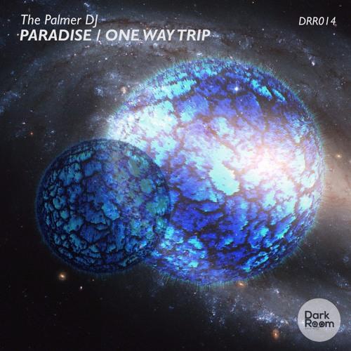 DRR014 - The Palmer DJ - Paradise / One Way Trip