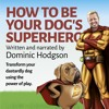 The Preface of How to Be Your Dog's Superhero