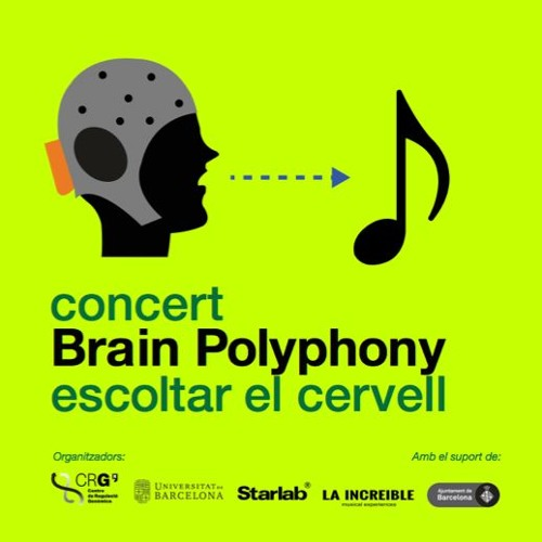Brain Poliphony concert recording 10 - DIC - 2016