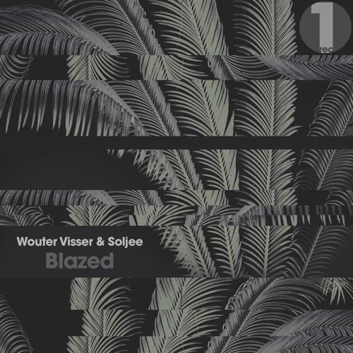 Wouter Visser & Soljee - Blazed (Original Mix) TEASER (11-01-17)