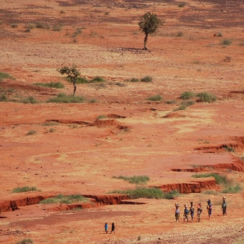Le Sahel : une région clef pour la France et l'Europe