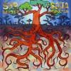 Beware (SOJA & Fear Nuttin Band)