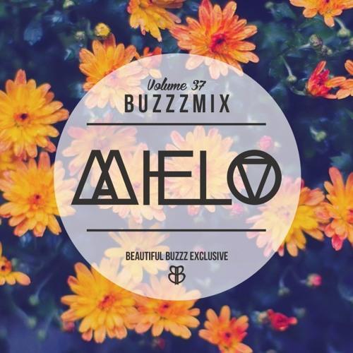 Buzzzmix Vol. 37 - Mielo