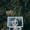 Jungle Fever Ft. Genio & Odunsi mp3
