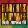 Charly Black Daddy Yankee – Gyal You Party Animal (Miguel Vargas Mix)
