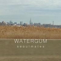 Max Koffler & Seoulmates - WATERGUM