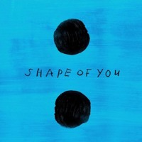 Free Download Shape Of You - Ed Sheeran (New Single cover) MP3 (5.27 MB - 320Kbps)
