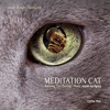 Titel  1 · NIGHT-VERSION | CD MEDITATION CAT von SCHNURR®MUSIK