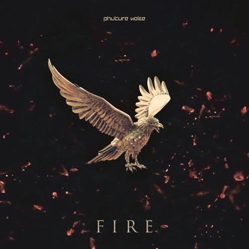 Phuture Noize - Fire