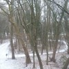 wintertime in Belgium