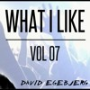 WHAT I LIKE VOL. 7 (New Year mix 2016/2017)