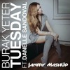 Burak Yeter - Tuesday ft. Danelle Sandoval  (janfry MashUp)