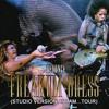 Beyoncé - Freakum Dress (Studio Version At I Am...Tour)