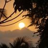 Evening Jasmine | Gentle Sounds of India, Sitar & Flute Music | Meditation & Sleep