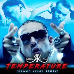 Sean Paul - Temperature (KROWD KINGS REMIX)