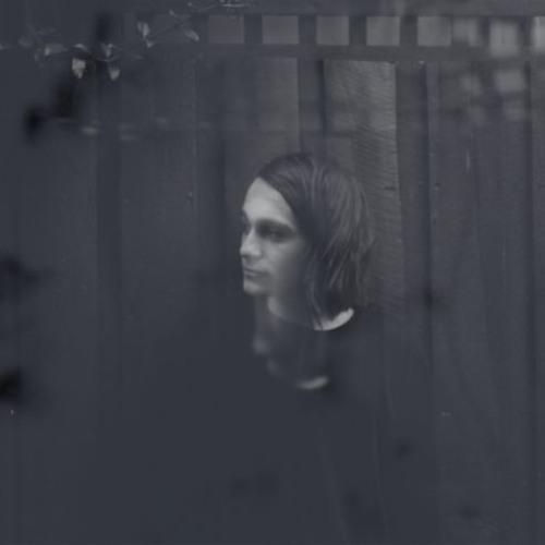 Download: Ludodowwn - Polar