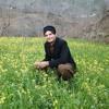 Lewane Shum Nan Me Yar ledale na dy Rehman baba by Moeez