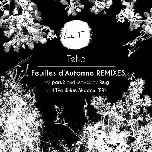 LT0002R - Teho - Feuilles d'Automne remixes (incl. Reig & THe WHite SHadow remixes)