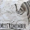 MISS REMEMBER - Fall In