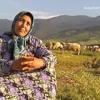 Makala ya jarida na Joseph Msami: Morocco