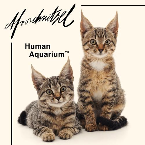 Human Aquarium ™
