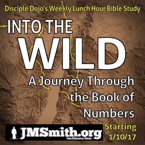 Into the Wild: A Journey Through the Book of Numbers
