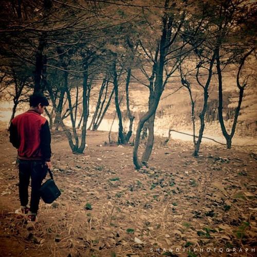 Noah - Andaikan Kau Datang Kembali (cover by shandy)