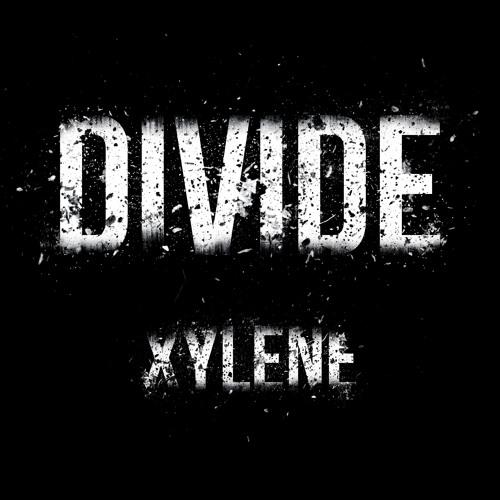 XYLENE - Divide