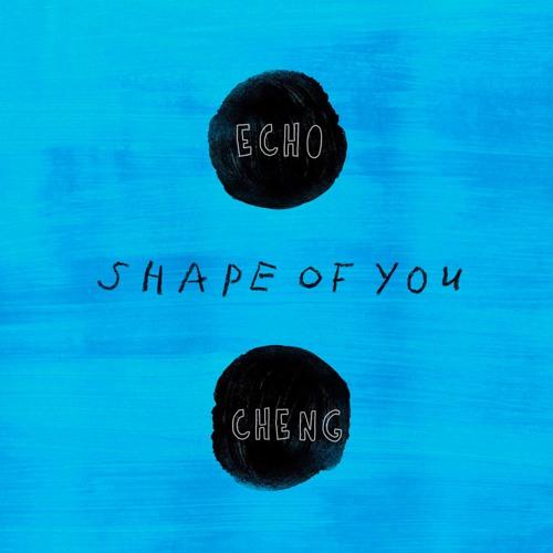 Shape Of You (cover Ed Sheeran)