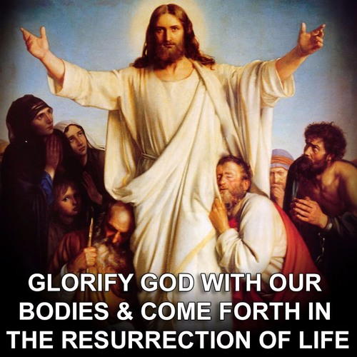 Creed: The Resurection - Glorify God with our bodies and come forth in the Resurrection of Life