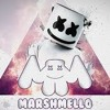 Marshmello - Summer (Official Music Video) With Lele Pons - mp3