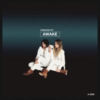 Freedom Fry - Awake