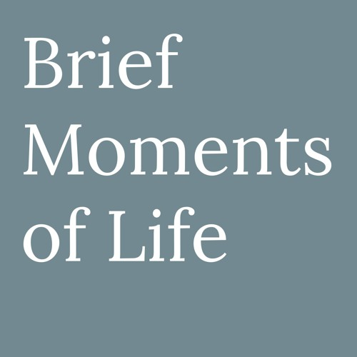 Brief Moments of Life