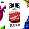 Sage The Gemini - Now Or Later (Deso Remix)